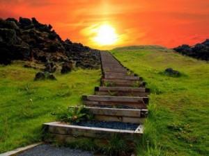 http://alfeiospotamos.gr/wp-content/uploads/2014/08/stairs-300x225.jpg