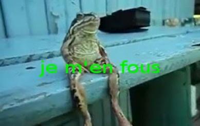 βατραχος αραχτος 1