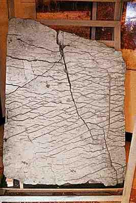χάρτης 120 εκατ. ετών