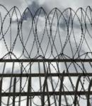 Και η Βρετανία θα προχωρήσει σε αποσυμφόρηση των φυλακών. Η κυβέρνηση της Ελλάδος αντίθετα περιμένει να έχει πολλά κρούσματα και νεκρούς για να κάνει αποσυμφόρηση των φυλακών.